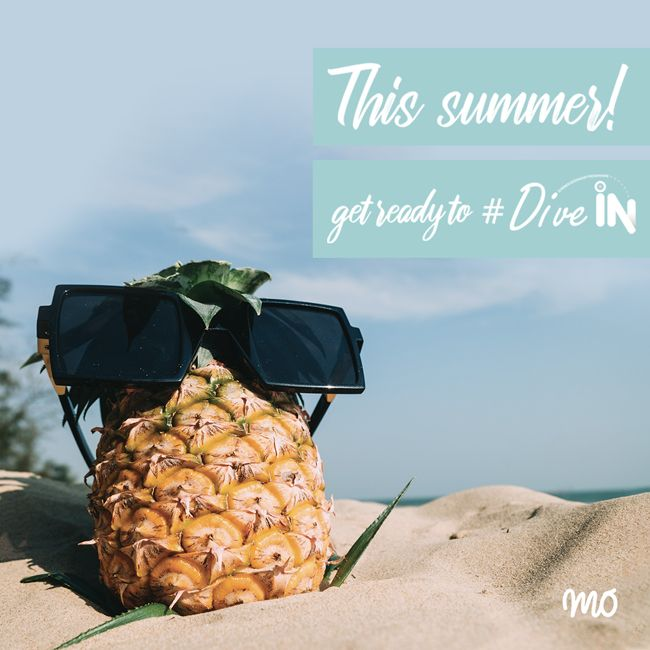 MO abre portas aos estágios de Verão