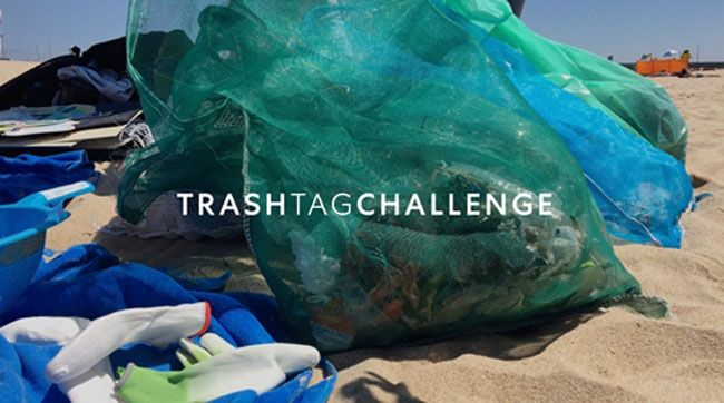 Zippy adere ao Trash Tag Challenge